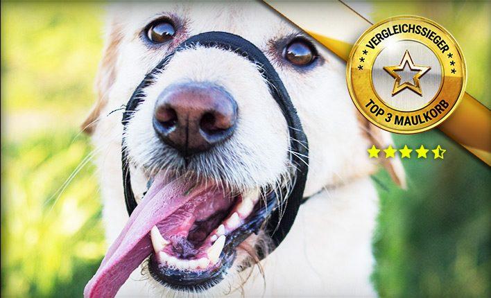 Maulkorb für Hunde