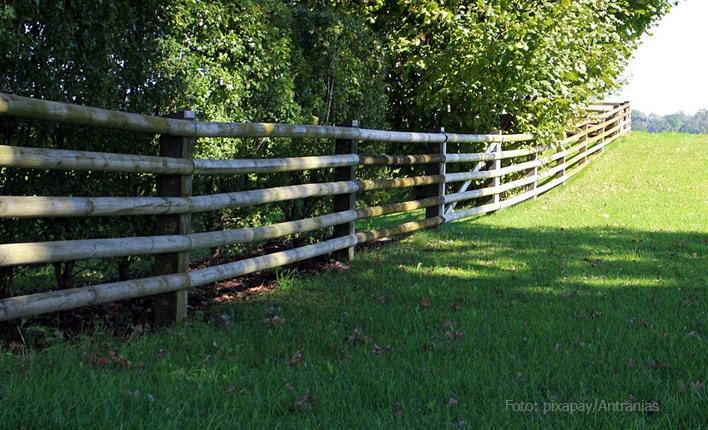 Grundstück schützen mit Ultraschall gegen Bellen